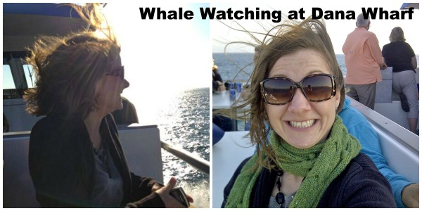 Whale Watching Dana Wharf