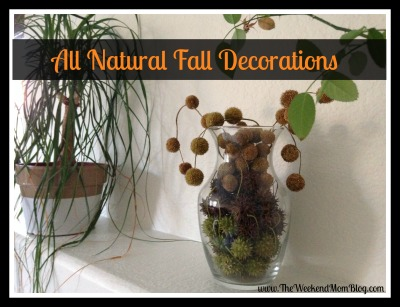 All Natural Fall Decorations