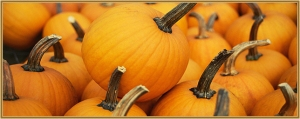 Halloween Pumpkin Crafts