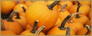 Halloween Pumpkin Crafts